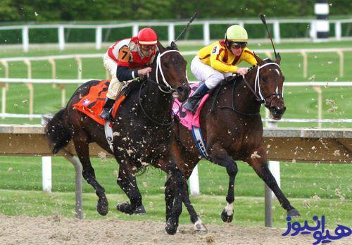 مسابقات اسب دوانی چقدر طرفدار دارد؟